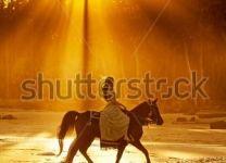 Фотообои Девушка на лошади