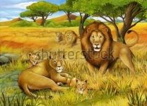 Фотообои-картина Львы в саванне